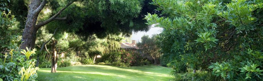 Site de l'association Les Cordelles aux Perreux sur Marne